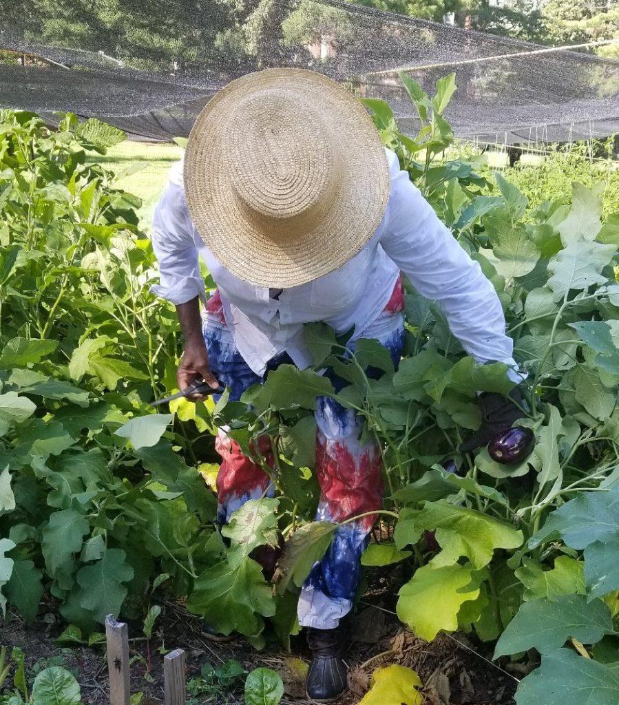 Farmer Gigi