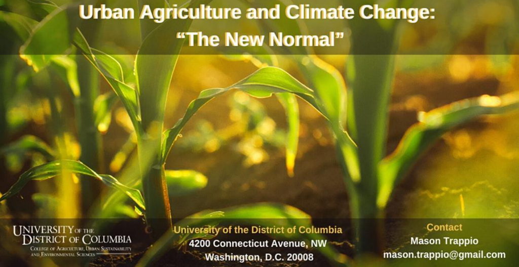"Urban Agriculture and Climate Change: ""The New Normal"""