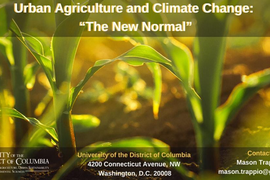 Urban Agriculture and Climate Change: The New Normal Flyer